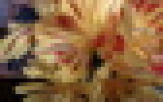 Делают ли клесты запасы на зиму: птица еловик