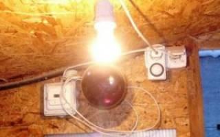 Нужно ли курам выключать свет на ночь: освещение курятника зимой