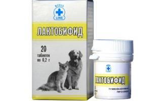 Лактобифид для собак инструкция по применению