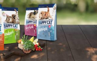 Корм для кошек хэппи кэт отзывы ветеринаров, happy кот