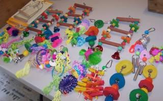 Как сделать игрушку для попугая своими руками?
