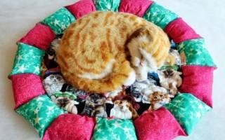 Диванчик для кошки своими руками