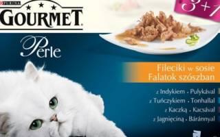 Гурмет корм для кошек отзывы ветеринаров