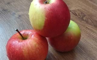 Как насушить яблок в домашних условиях?