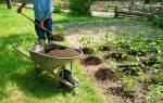 Кислый торф для каких растений подходит – торфокрошка для огорода