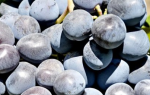 Сорт винограда Руслан фото и описание