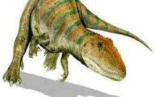 Кархародонтозавр против тиранозавра: зубастый я динозавры