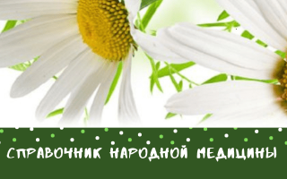 Цветы бархатцы лечебные свойства и применение – чернобривцы польза и вред для здоровья