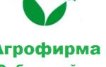Питомник сибирский сад отзывы покупателей