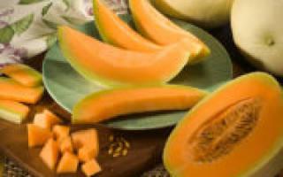 Цукаты из дыни в домашних условиях рецепт