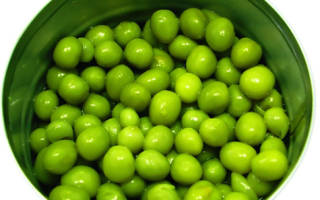 Зеленый горошек замороженный польза и вред – горох свойства