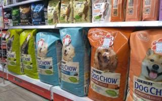 Что значит холистик корм для собак?