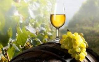 Технология виноградного вина в домашних условиях