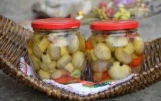 Помидоры с яблочным уксусом на зиму рецепты