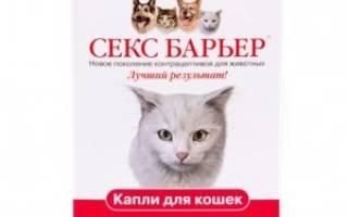 Секс барьер таблетки для кошек