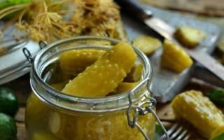 Огурцы бочковые с горчицей в банке рецепт