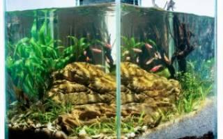 Как приготовить воду для аквариума быстро?