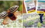 Препарат регент инструкция по применению – средство от колорадского жука в ампулах