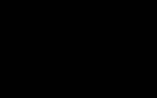 Когда начинать кормить котят и чем: когда котятам можно давать прикорм?
