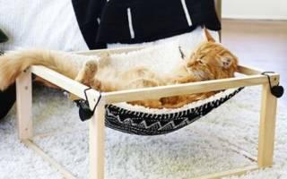 Как сделать гамак для кошки своими руками?