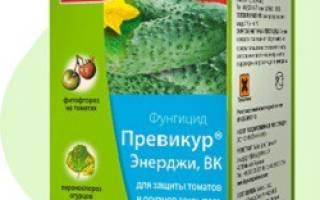 Фунгициды для растений список препаратов для растений