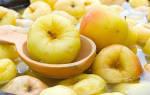 Как замочить яблоки на зиму в банках?