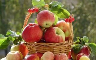 Как сделать на зиму яблочное пюре?