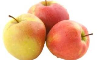 Заготовки на зиму из яблок лучшие