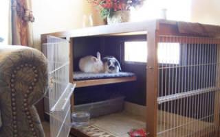 Домик для домашнего кролика своими руками