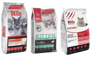 Корм для кошек блиц отзывы ветеринаров
