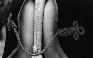 Прически для лошадей – как заплести гриву?