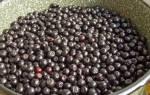 Рецепт вина из черноплодки в домашних условиях