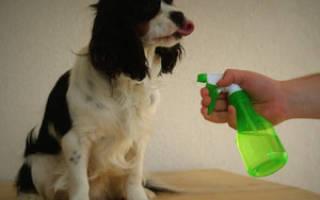 Сухой шампунь для собак отзывы