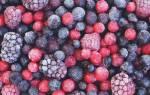Какие овощи и фрукты можно замораживать, заморозка ягод на зиму в домашних условиях