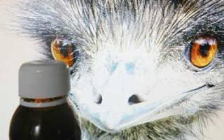 Масло страуса эму: что это?