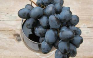 Сухое домашнее вино из винограда рецепт приготовления