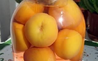 Как закрыть персики с косточкой на зиму?