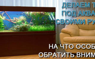 Тумба под аквариум 200 литров своими руками