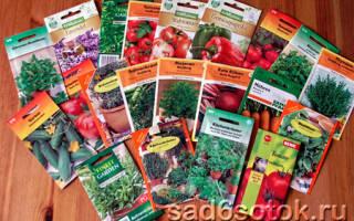 Сколько лет семена томатов сохраняют всхожесть – сроки хранения семян