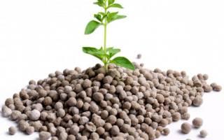 Для каких целей используют фосфорсодержащие удобрения – что относится к фосфорным удобрениям?