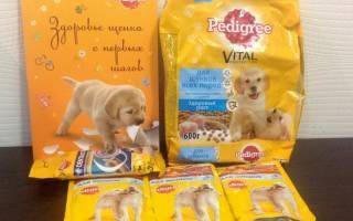 Педигри корм для собак состав