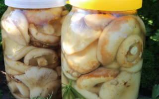 Как засолить волнушки горячим способом быстро: волжанки как солить