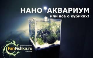 Нано аквариум, что это такое – наноаквариумы?