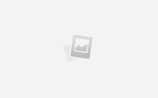 Осложнения после наркоза у кошек